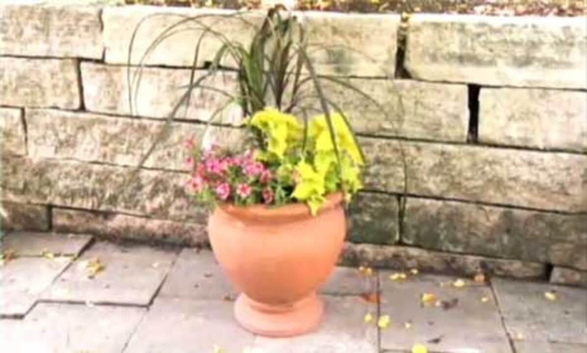 Video: Container Garden Design Tips