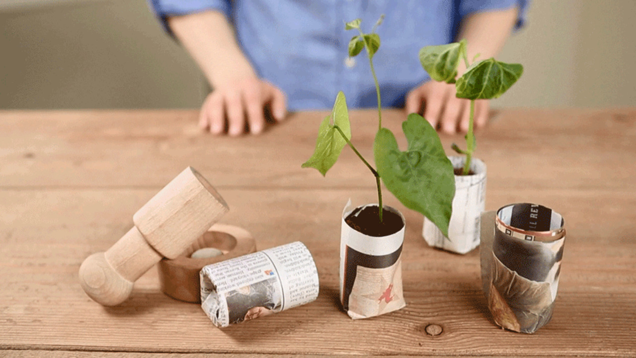 Cheap and Easy Seedling Pots