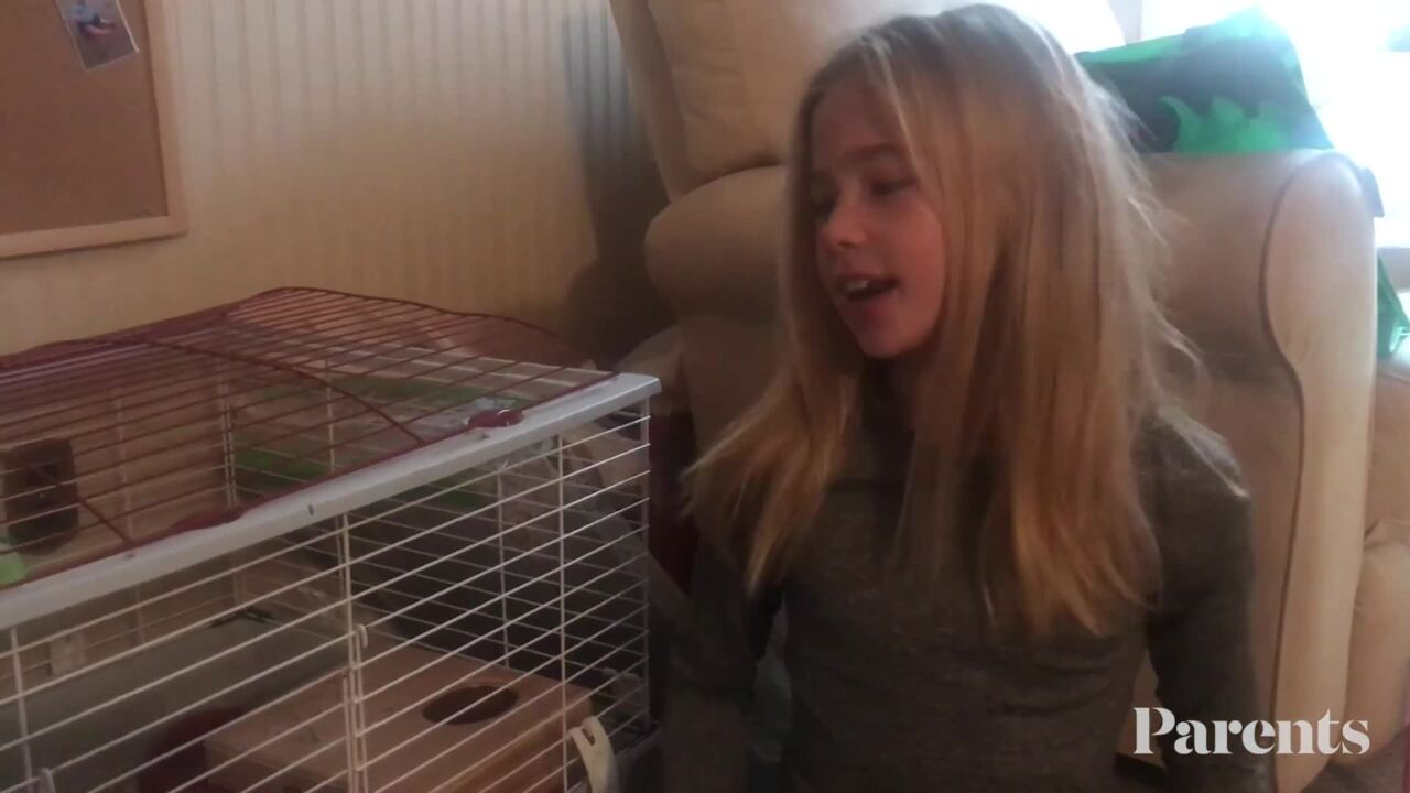 Caroline and Her Guinea Pigs