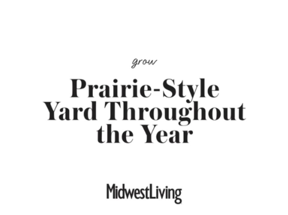 A Prairie-Style Yard in All 4 Seasons