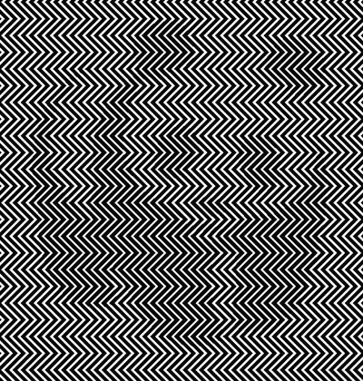 If You Liked The Hidden Panda You Ll Love This Optical Illusion