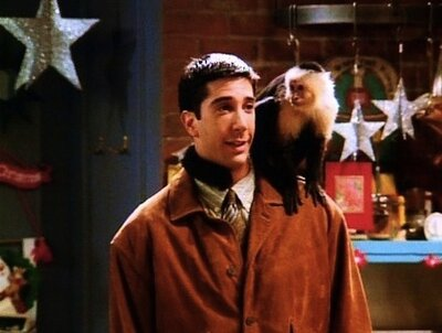 """The one """"Friends"""" episode David Schwimmer will never forget"""