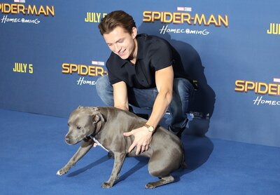 Tom Holland had *the best* date on the
