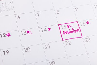 When Do You Ovulate? Here's How to Keep Track of Your Cycle