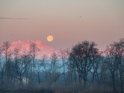 Rebel—Then Restore—with These Full Sturgeon Moon Rituals