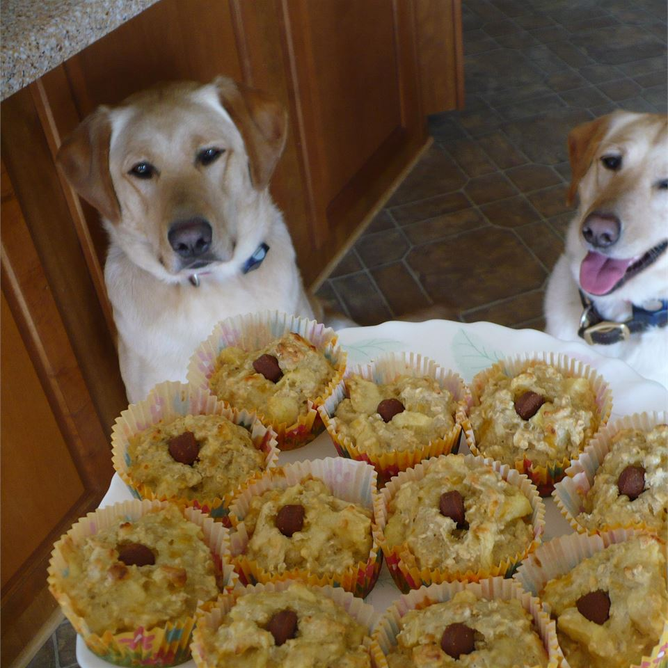 Pup-Cakes stallcleaner1000