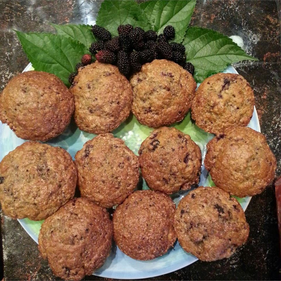 Mulberry Muffins astcgirl