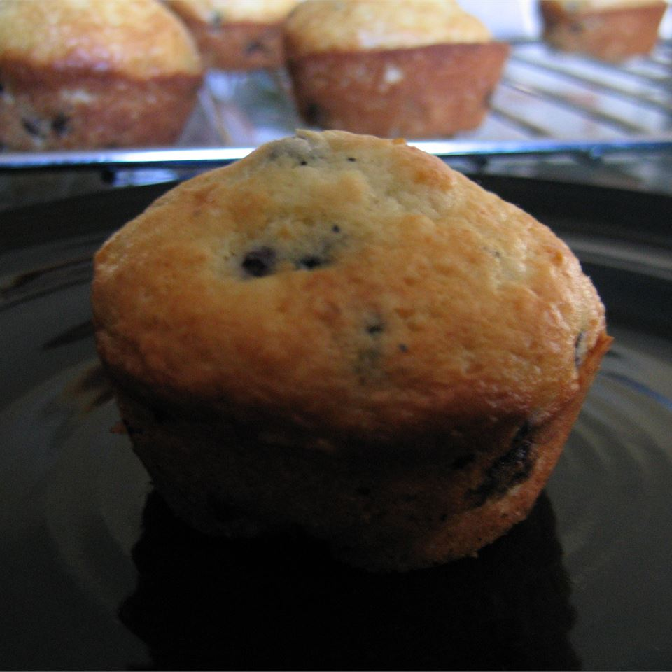 Low-Cholesterol Blueberry Muffins II ESLP