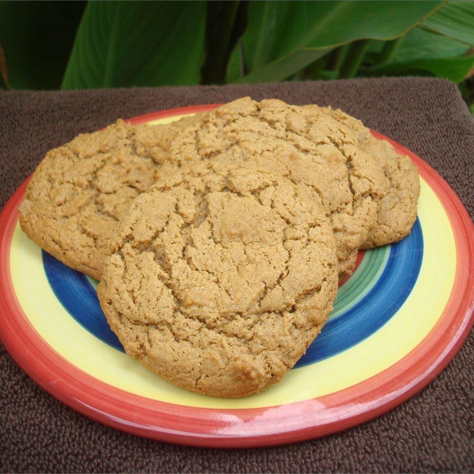 Healthier Big Soft Ginger Cookies Arizona Desert Flower