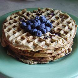Blueberry Flavored Waffles sal