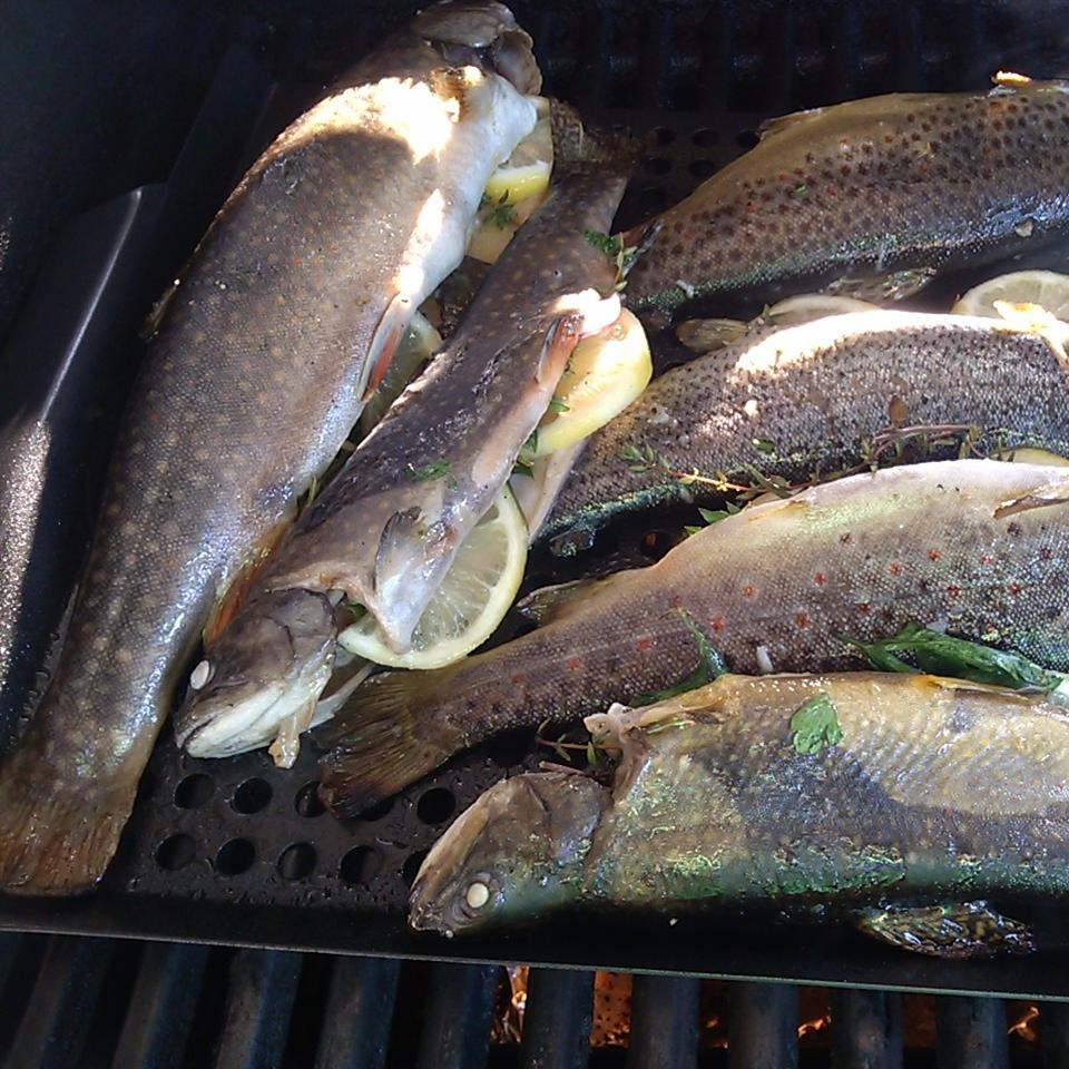 Whole Grilled Trout