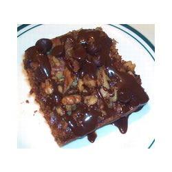 Chocolate Zucchini Cake I Michelle Ramey