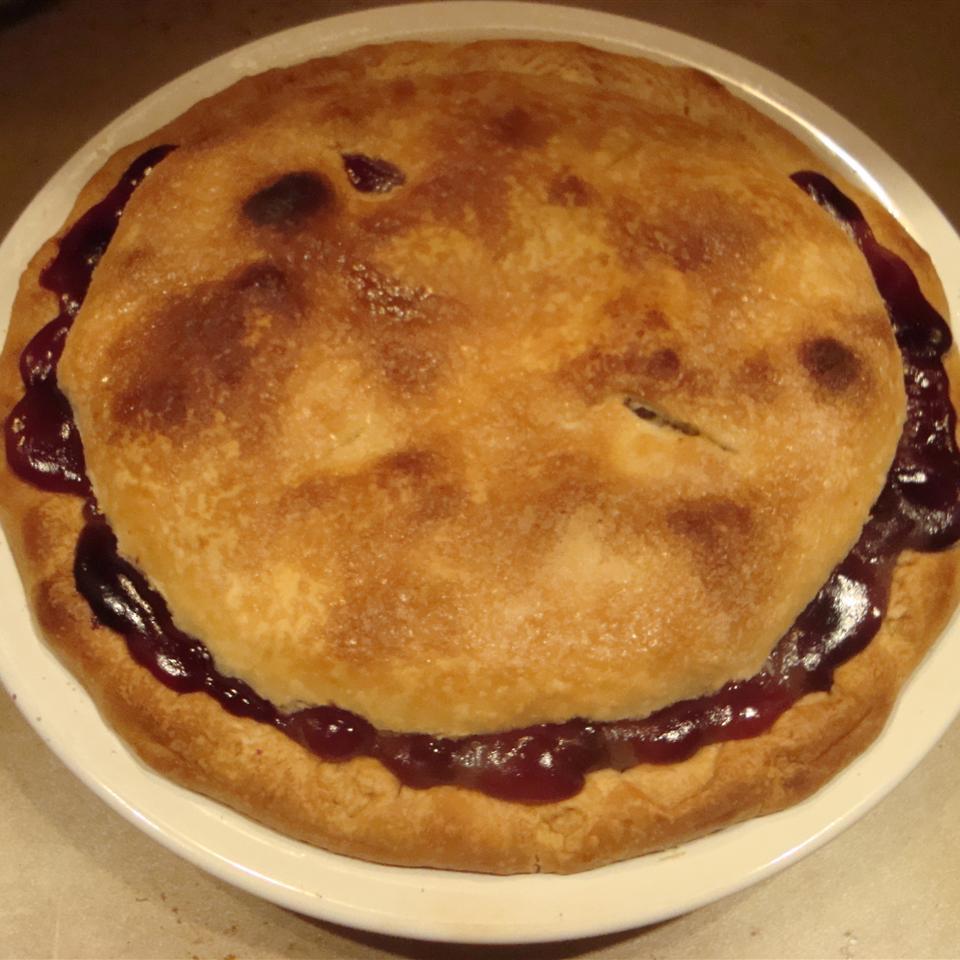 Concord Grape Pie I walker23