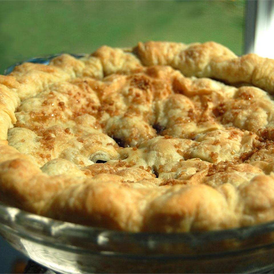 Fresh Blueberry Pie I chibi chef