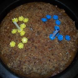 Sara Jane's Oatmeal Cake VIVNIDHI