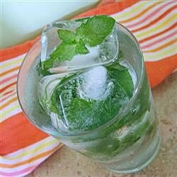 mint ice cubes recipe