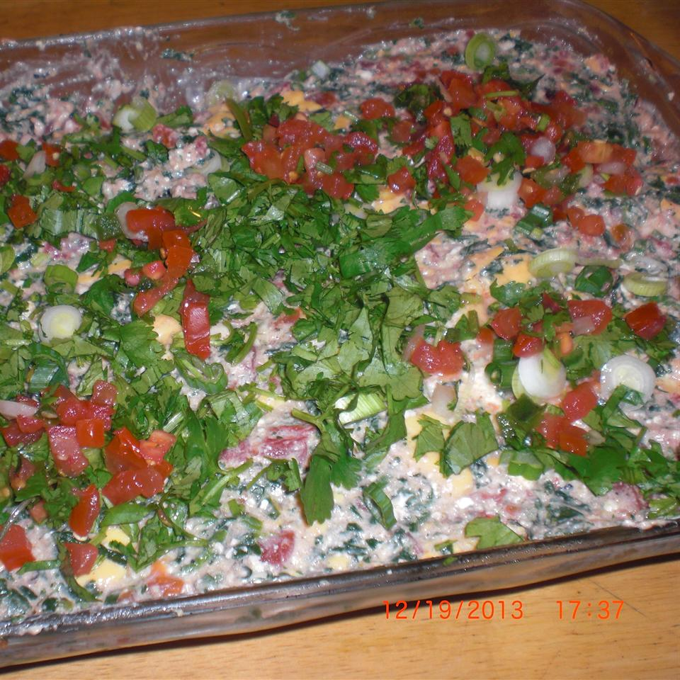 Mexican Spinach Dip Patty Cakes