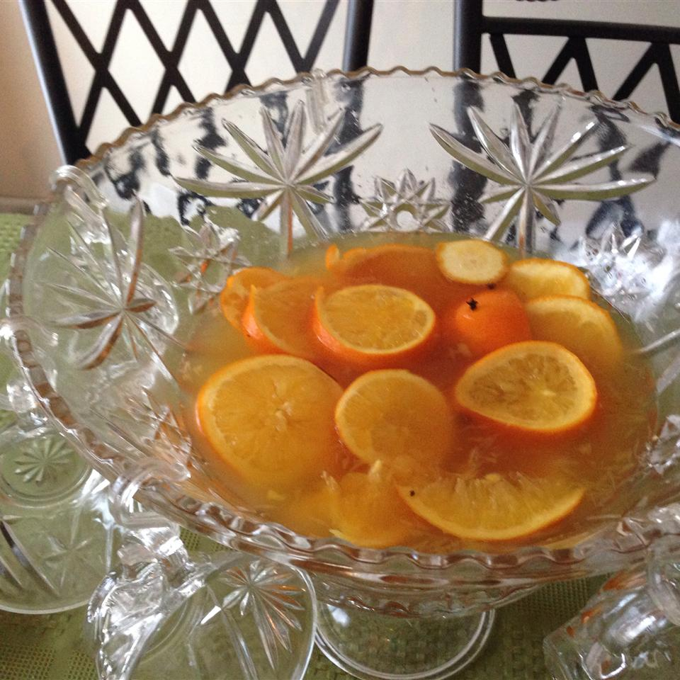 Warm and Spicy Autumn Punch Gina