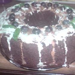 Chocolate Pudding Fudge Cake Haz