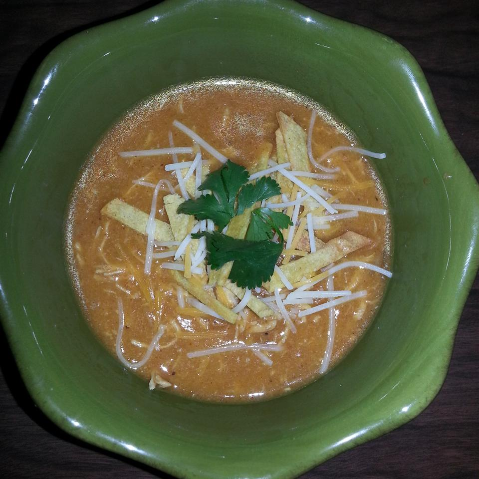 Chicken Enchilada Soup III SpiceUpYourLife