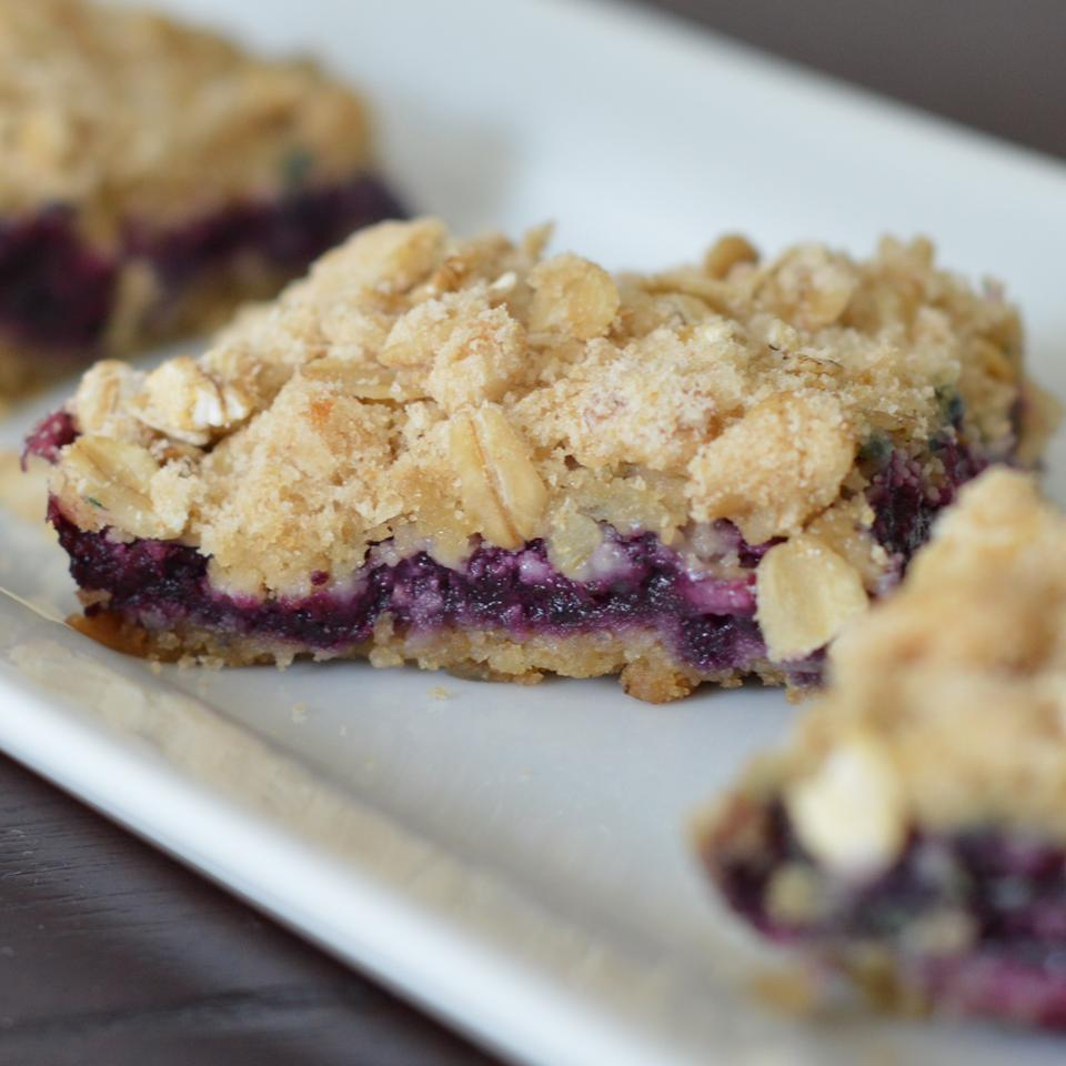 Blueberry Squares Holiday Baker
