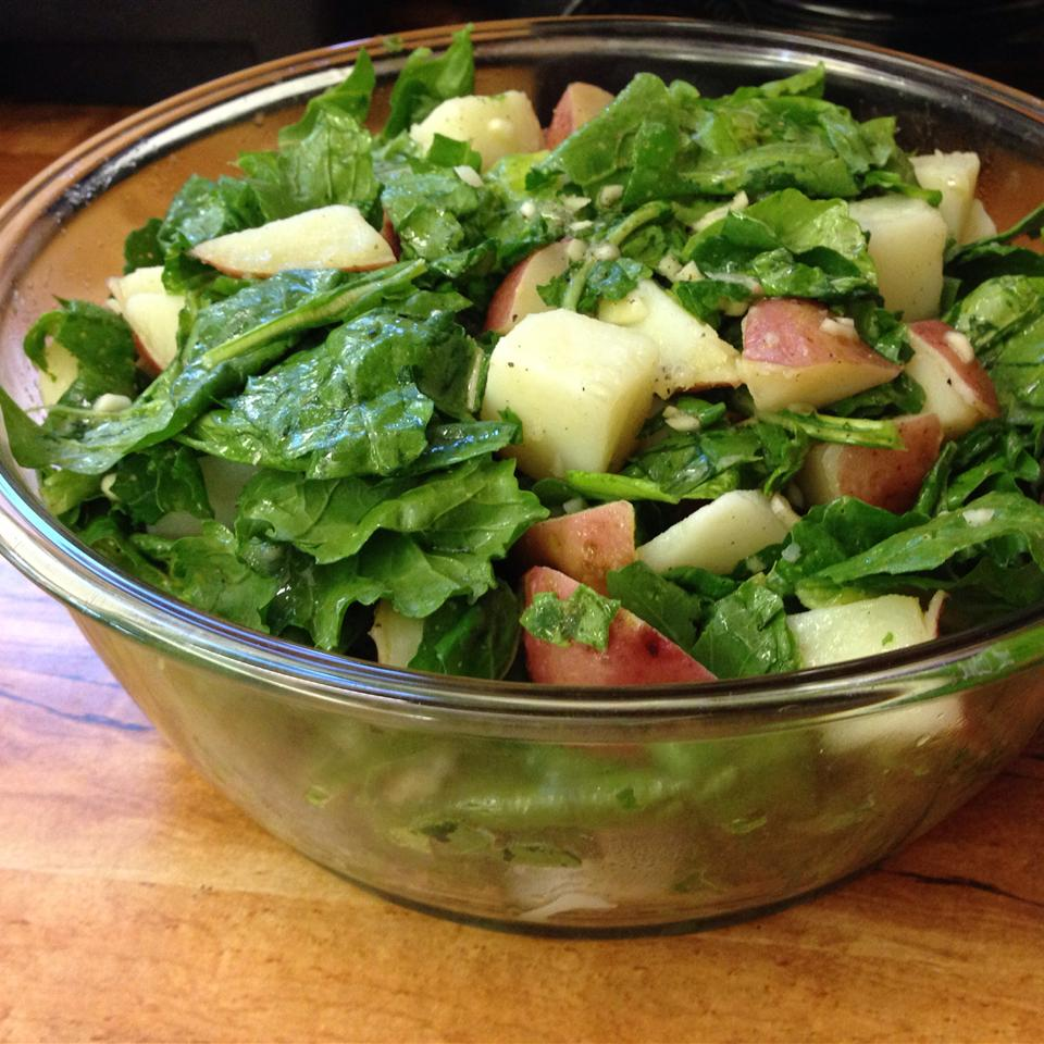 Potato Arugula Salad JDAVIS3662