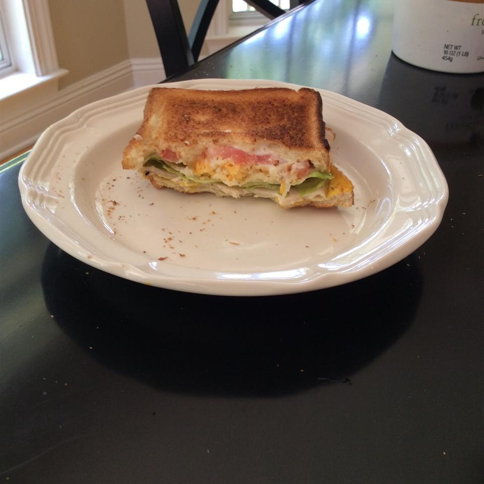 Awesome Turkey Sandwich Erin Moseley