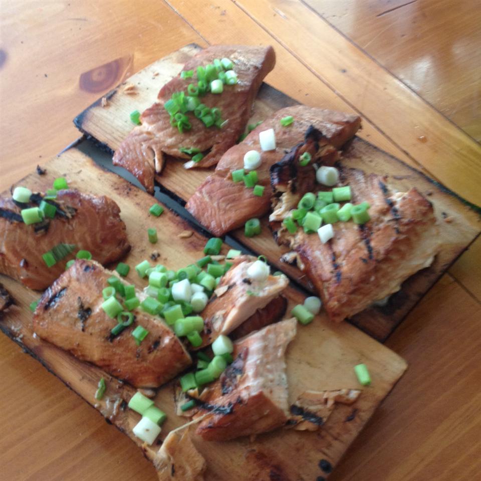 Honey-Ginger Grilled Salmon Jim