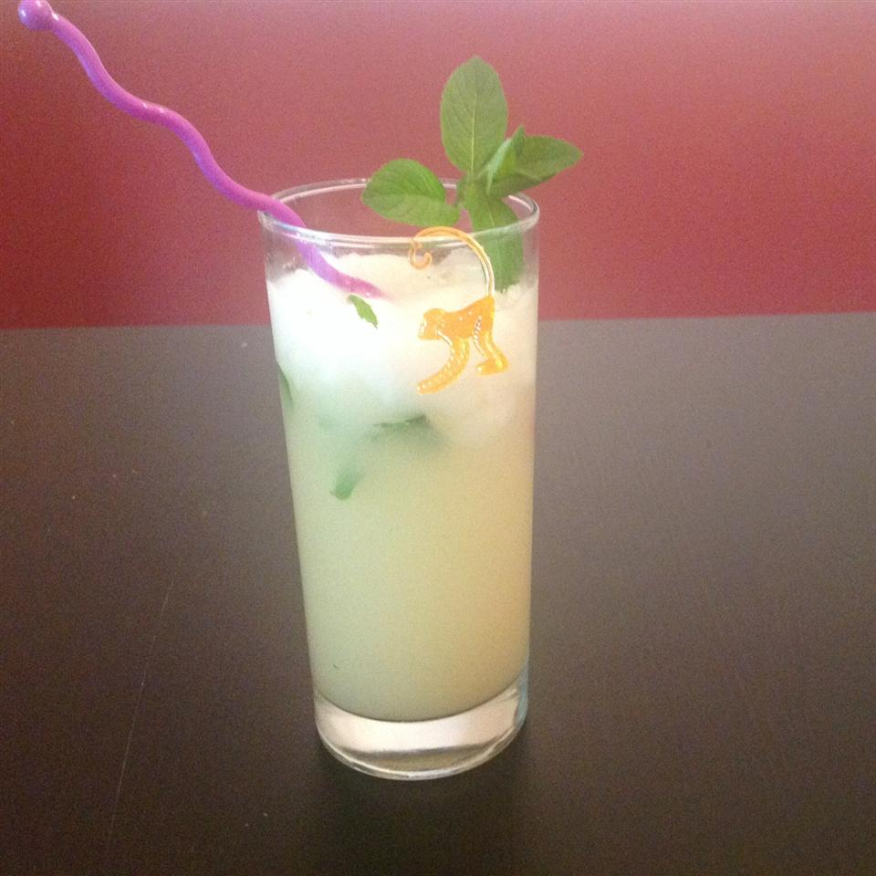 Malian Ginger Juice ONIOND