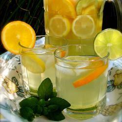 Citrus Lemonade Valerie Kelly