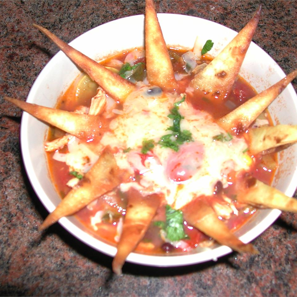 Tortilla Soup II GEANERS