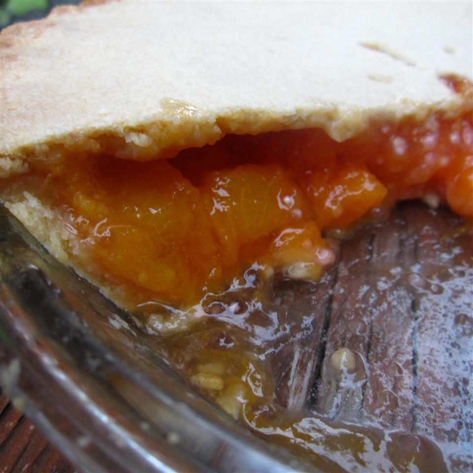 Freezer Pie Filling Judy Metcalf