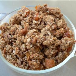 Light Fruit and Nut Granola Scotdog