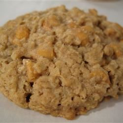 Beth's Spicy Oatmeal Raisin Cookies FNChef
