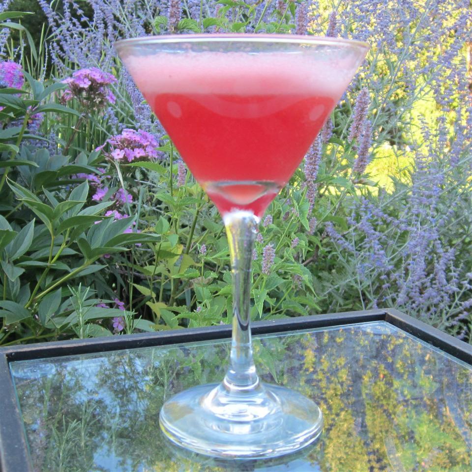 Easy Watermelon Martini Deb C