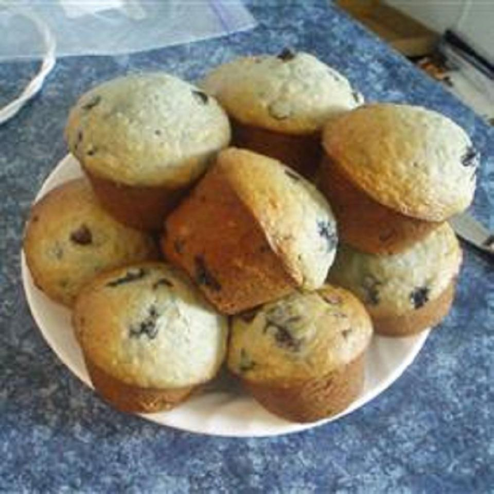 Chocolate Chip and Blueberry Muffins