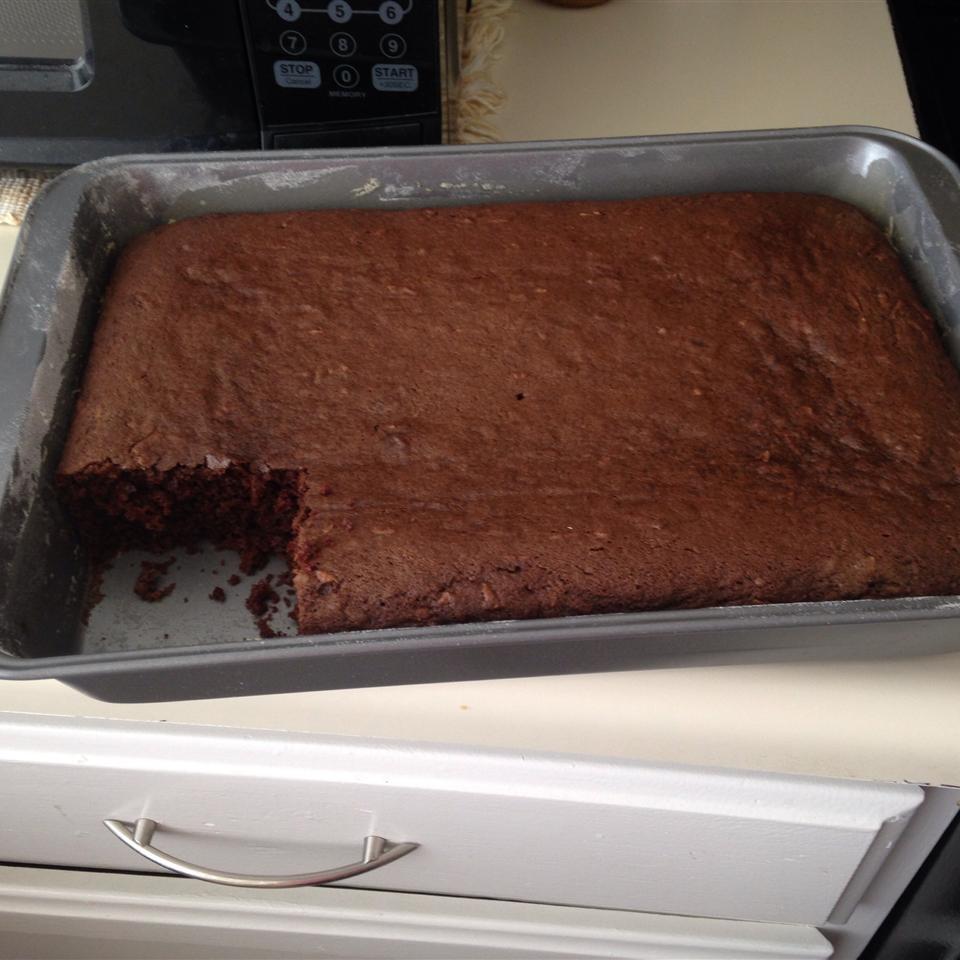Chocolate Zucchini Cake IV Debbie Dove
