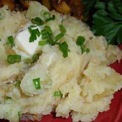 Mashed Potato Dream naples34102
