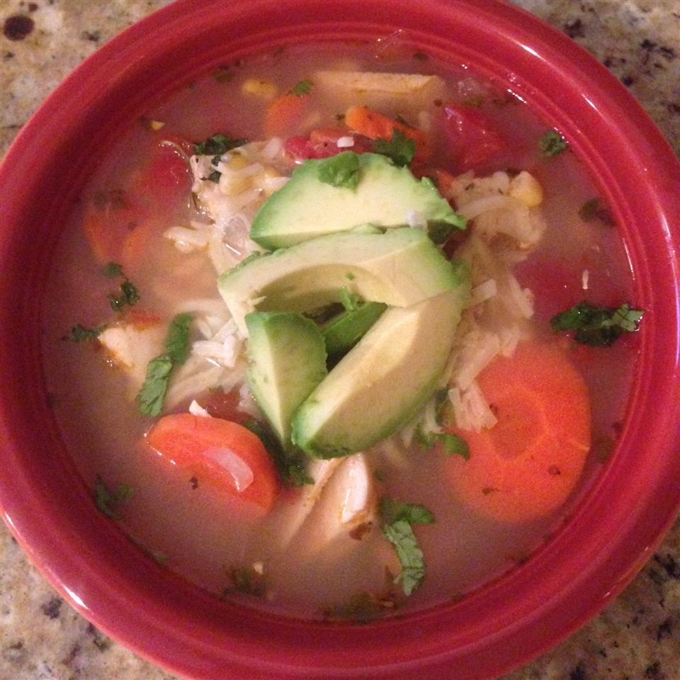 Zeke's Tortilla Soup ZEKE718