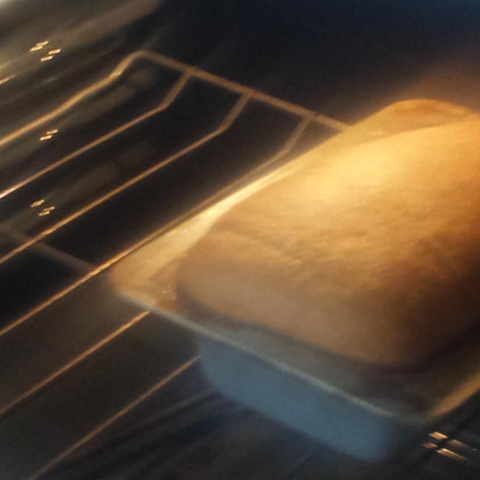 Good 100% Whole Wheat Bread