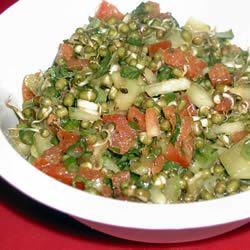 Sprouted Lentil Salad Sandi