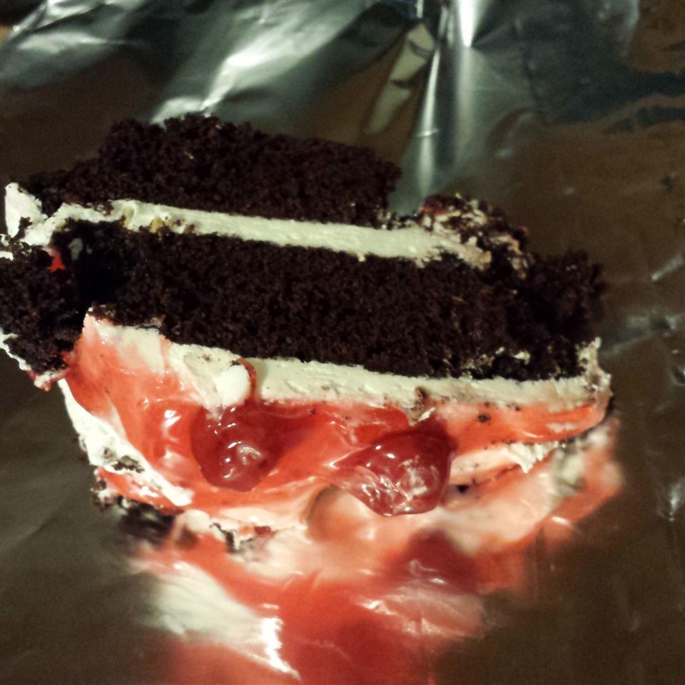 Chocolate Mayo Cake Allyssa Marie Sneed