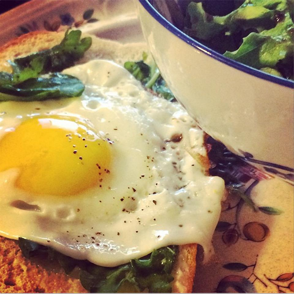 Open Faced Egg Sandwiches with Arugula Salad ZombieBunny