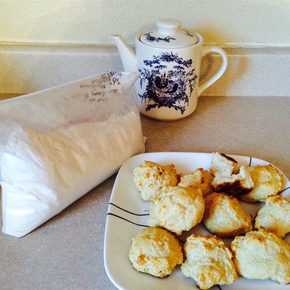 Easy Biscuit Mixture snouzie
