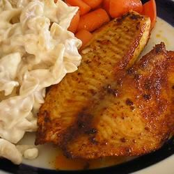 Blackened Tilapia with Secret Hobo Spices gapch1026