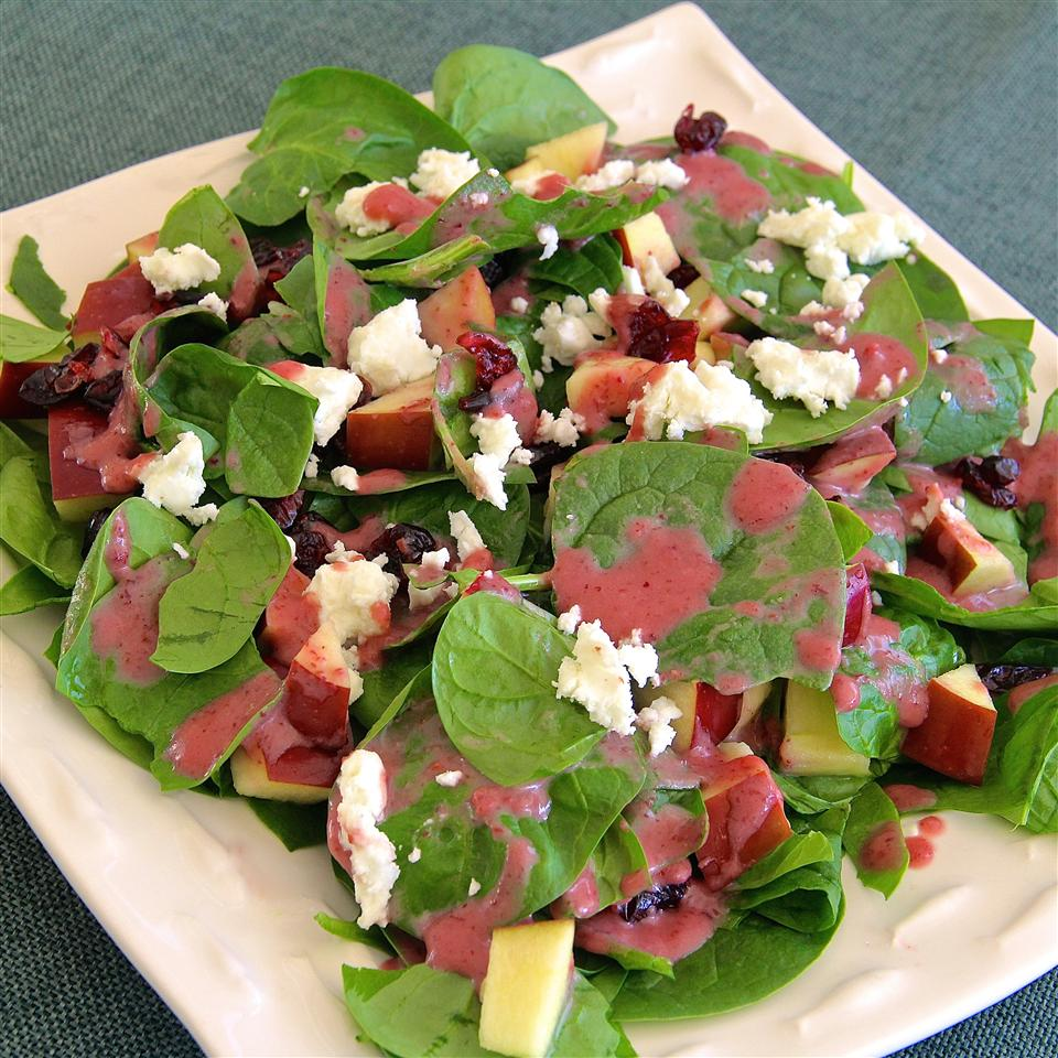 Spinach Salad with Pomegranate Cranberry Dressing lutzflcat