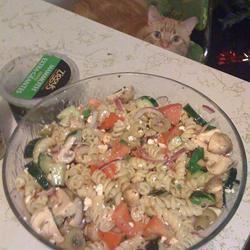 Greek Pasta Salad III canibal cook