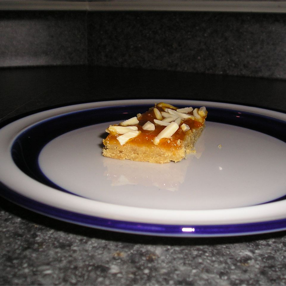 Apricot Bars I gapch1026