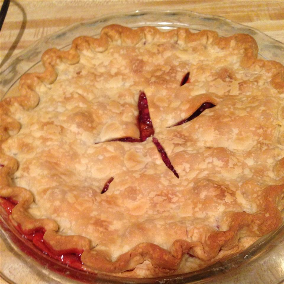 Mom's Cranberry Apple Pie Gina
