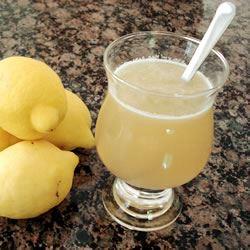 Tasty Lemonade Inger